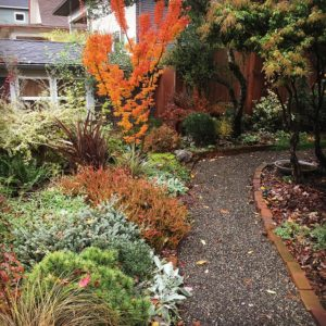 4 Things Proactive Homeowners Do in September