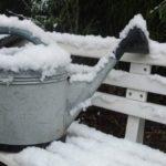 Winter, winter gardening, prep, spring, garden, gardening
